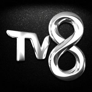 TV8 Logosu